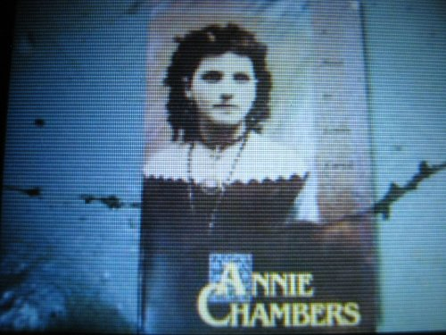 Annie Chambers: A Novel: Carroll, Lenore