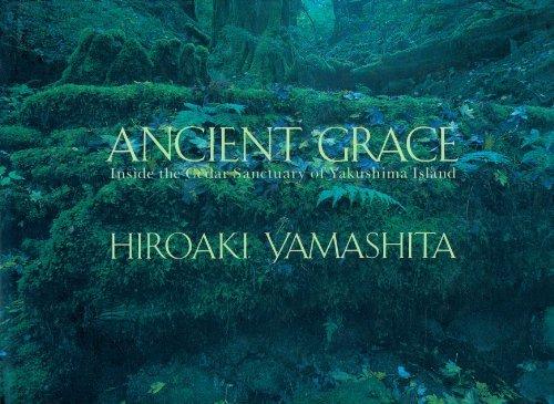 9780929279794: Ancient Grace: Inside the Cedar Sanctuary of Yakushima Island
