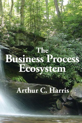 9780929652467: The Business Process Ecosystem