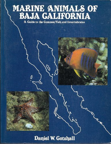 9780930118082: Marine animals of Baja California: A guide to the common fish and invertebrates