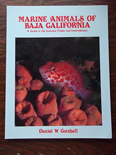 9780930118150: Marine Animals of Baja California: A Guide to the Common Fishes and Invertebrates