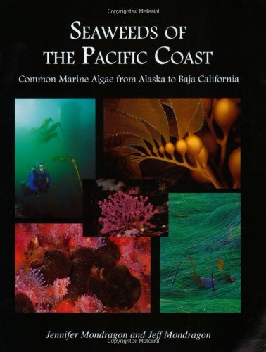 Seaweeds of the Pacific Coast: Common Marine: Jennifer Mondragon; Jeff