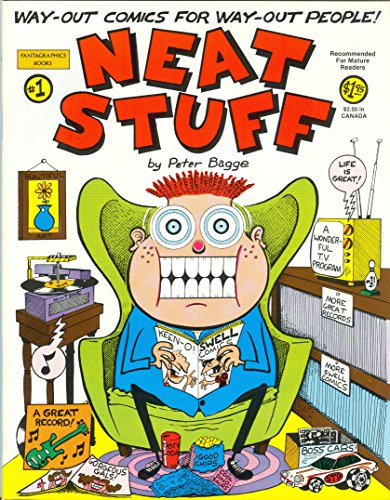 9780930193539: The best of Neat Stuff