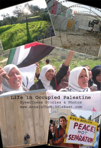 9780930852474: Life in Occupied Palestine: Eyewitness Stories & Photos