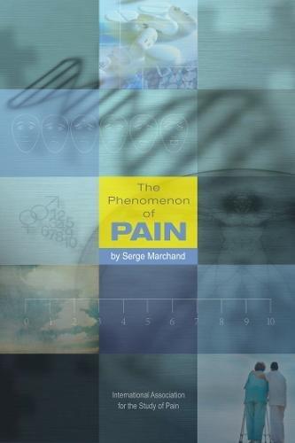 9780931092916: The Phenomenon of Pain