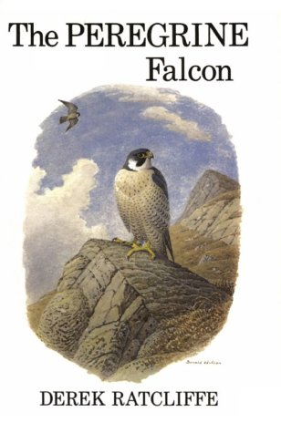 9780931130052: The Peregrine Falcon, First Edition