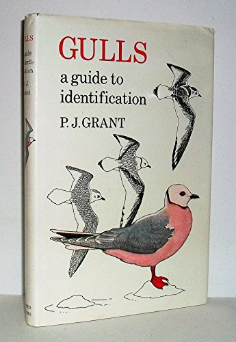 9780931130083: Gulls, a guide to identification