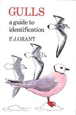 9780931130144: Gulls: A Guide to Identification