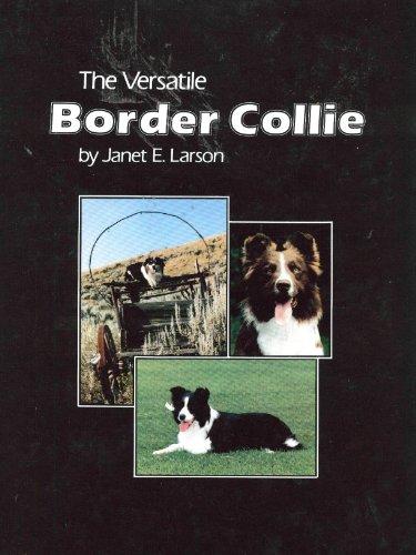 9780931866142: The Versatile Border Collie