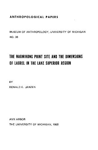 The Naomikong Point Site and the Dimensions: Donald E. Janzen