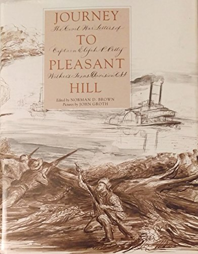 Journey to Pleasant Hill: The Civil War Letters of Captain Elijah P. Petty, Walker's Texas Divisi...