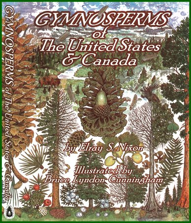 9780934115056: Gymnosperms of the United States and Canada
