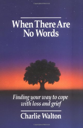 9780934793575: When There Are No Words: Finding Your Way to Cope with Loss and Grief
