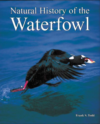 Natural History of the Waterfowl: Frank S. Todd