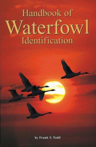 9780934797146: Handbook of Waterfowl Identification