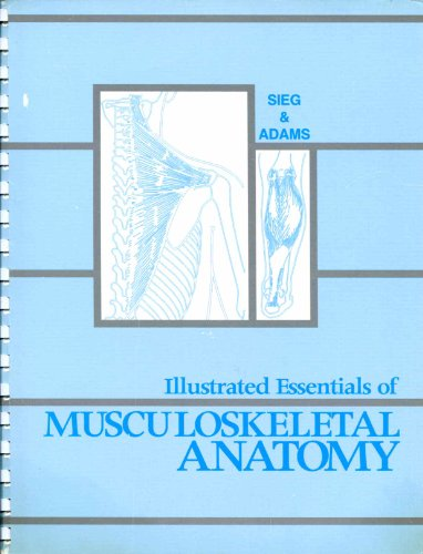 Illustrated Essentials of Musculoskeletal Anatomy: Kay W. Sieg,
