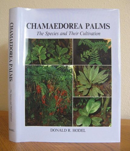 9780935868562: Chamaedorea Palms the Species and Their Cultivation