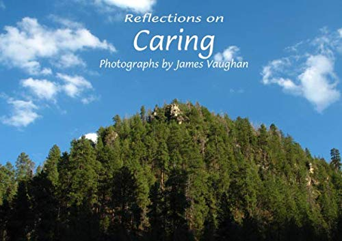 9780936390383: Reflections on Caring (Volume 10)