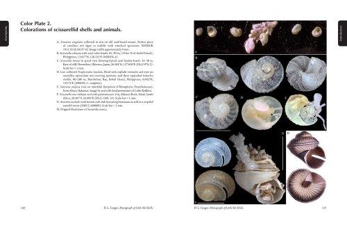 9780936494456: Monograph of the Little Slit Shells (Santa Barbara Museum of Natural History Monographs)