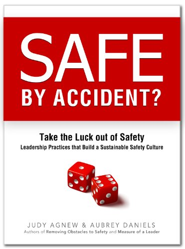 Safe By Accident?: Aubrey Daniels; Judy Agnew