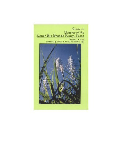 9780938738084: Guide to the Grasses of the Lower Rio Grande Valley, Texas
