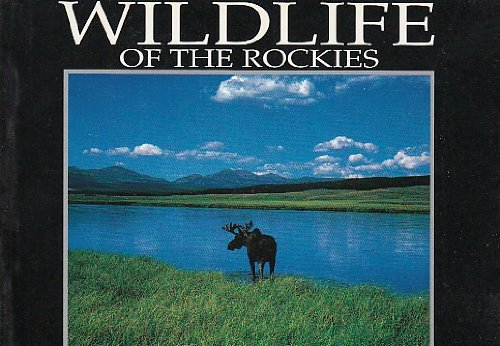 9780939365357: Wildlife of the Rockies (Wish You Were Here Postcard Books)