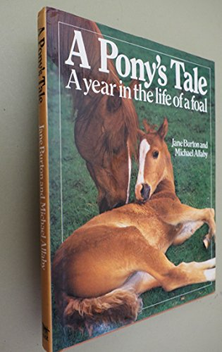 A Pony's Tale: A Year in the: Michael Allaby, Jane
