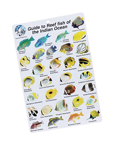 9780939560127: Guide to Reef Fish of the Indian Ocean