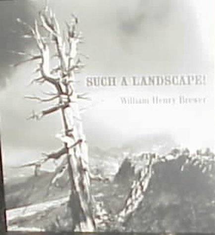 9780939666911: Such a Landscape!: A Narrative of the 1864 California Geological Survey Exploration of Yosemite, Sequoia & Kings Canyon from the Diary, Field Notes, Letters & Reports of