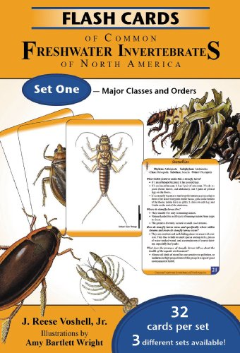 9780939923267: Flash Cards of Common Freshwater Invertebrates of North America Set One - Major Classes and Orders