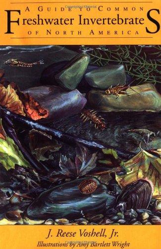 9780939923878: A Guide to Common Freshwater Invertebrates of North America