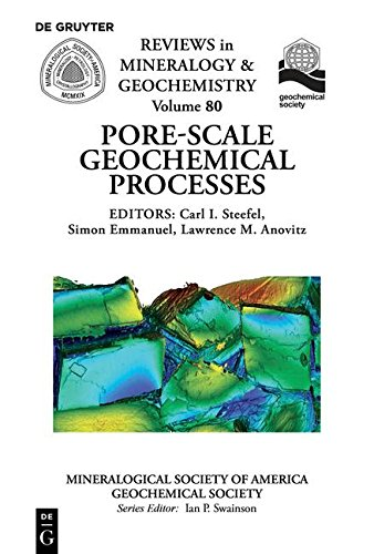 9780939950959: Pore Scale Geochemical Processes (Reviews in Mineralogy & Geochemistry)