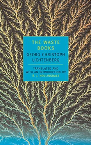 9780940322509: The Waste Books (New York Review Books Classics)