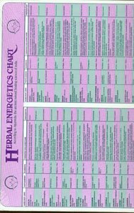 9780941524292: Herbal Energetics Chart: According to Ayurveda the Ancient Natural Healing Science of India