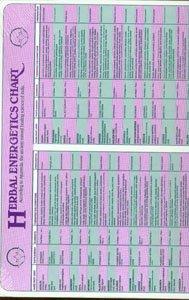 9780941524292: Herbal Energetics Chart 9