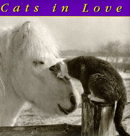 9780941807029: Cats In Love
