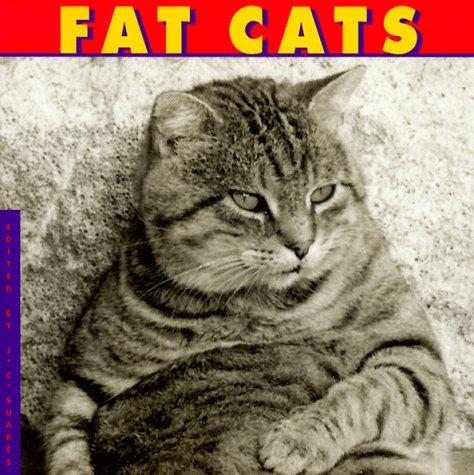 9780941807043: Fat Cats