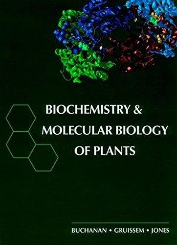 Biochemistry & Molecular Biology of Plants: Buchanan, Bob B.