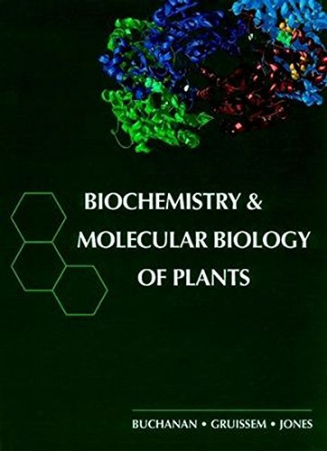 9780943088396: Biochemistry & Molecular Biology of Plants
