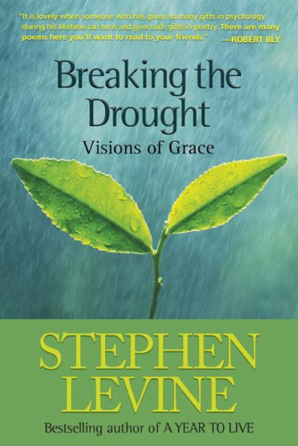 9780943914480: Breaking the Drought: Visions of Grace