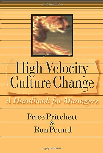 9780944002131: High Velocity Culture Change: A Handbook for Managers