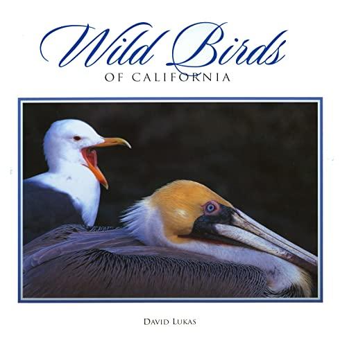 9780944197639: Wild Birds of California (Companion Press Series)