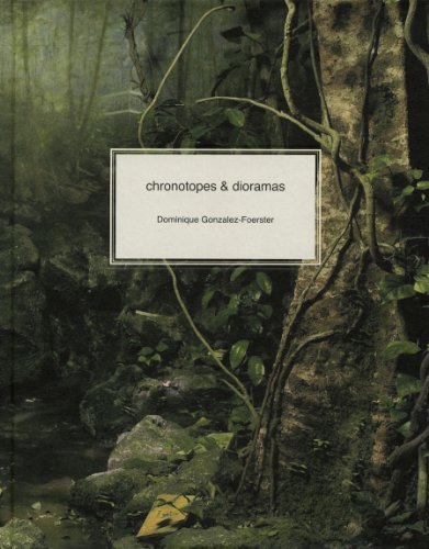 9780944521571: Dominique Gonzalez-Foerster: Chronotopes & Dioramas
