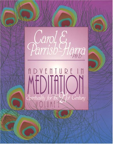 9780945027133: Adventure in Meditation : Spirituality for the 21st Century: Vol. I