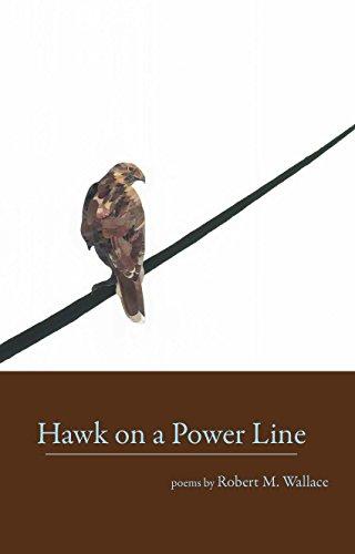 9780945083405: Hawk on a Power Line