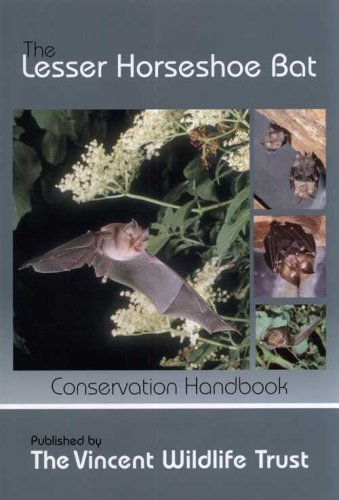 9780946081523: The Lesser Horseshoe Bat: Conservation Handbook