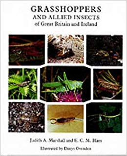 Grasshoppers and Allied Insects of Great Britain: Judith Marshall; Christopher