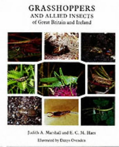 Grasshoppers and Allied Insects of Great Britain: Marshall, J.A; Haes,