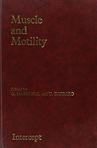 9780946707348: Muscle and Motility, Vol. 2: Proceedings of the XIXth European Conference in Brussels