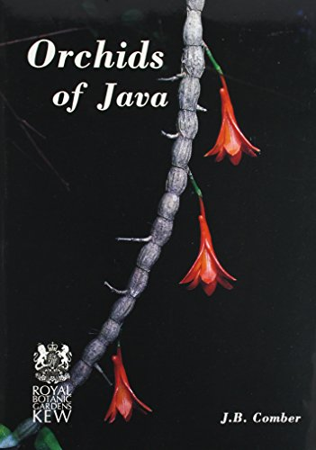 9780947643218: Orchids of Java